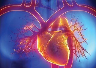 A survivorship dilemma: The impact of cancer treatment on cardiovascular risk factors