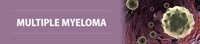Multiple Myeloma section