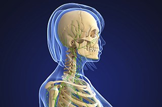 Internal lymphedema underlies swallow dysfunction in head and neck cancer