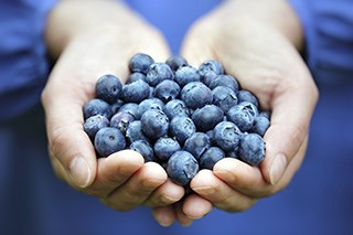 Antioxidants and Cancer Prevention (Fact Sheet)