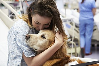Animal assisted therapy enhances cancer care