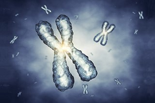 Genetic variations associated with cisplatin-induced ototoxicity identified