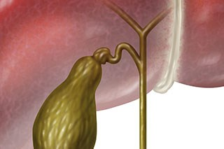 Bile duct cancer study may pave way for new treatments