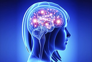 Anthracycline Chemotherapy Not Associated With Cognitive Decline
