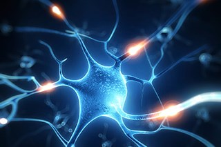 Neuropathic Cancer Pain Linked to Reduced Quality of Life