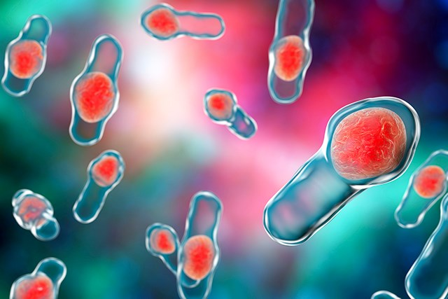 Rates of Infection with Clostridium Difficile Increase Over Time in Patients With Cancer