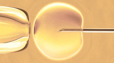 Fertility preservation talks are more direct for men than for women