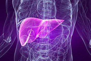 There is therapeutic potential for iPS-ML/IFN-β in patients with liver cancer, but more research is needed.