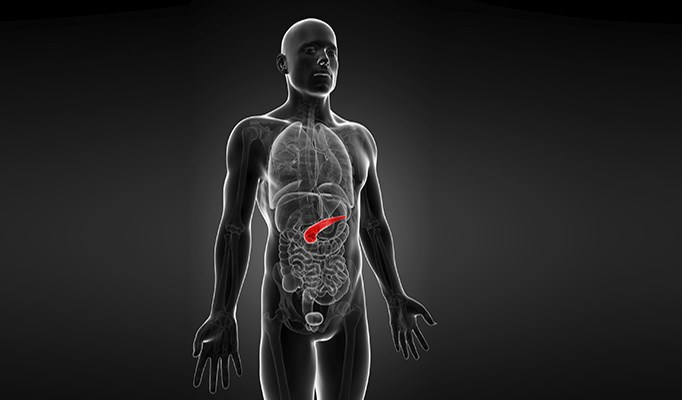 For advanced pancreatic cancer, simtuzumab not significantly more effective than placebo