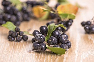 Chokeberry extract may boost chemo effectiveness