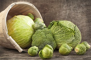 Cruciferous Vegetables and Cancer Prevention [Fact Sheet]