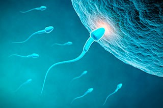 G-CSF May Help Preserve Fertility in Male Patients With Cancer