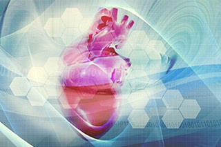 Risk for Fatal Cardiovascular Events Not Increased in Patients With Breast Cancer Taking Aromatase Inhibitors