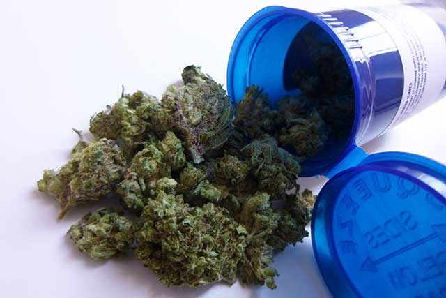 The integration of cannabis into palliative care appears promising in terms of its therapeutic properties to assuage cancer-related pain.