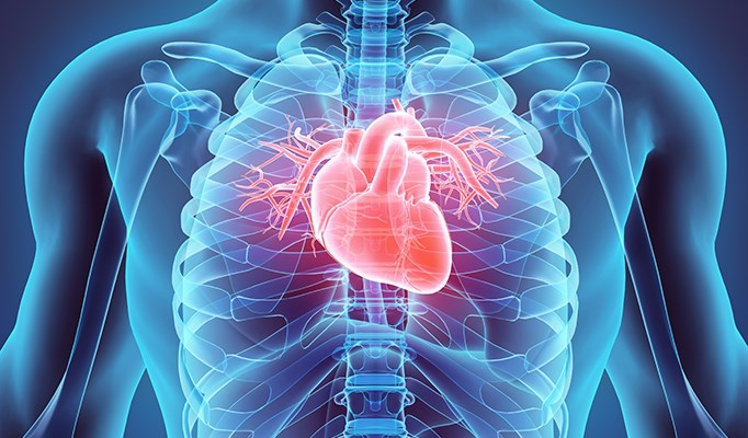 Increases in CVD Risk Factors Associated With Worse Survival in Breast Cancer