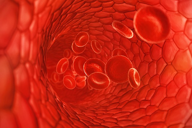 Older patients with CML displayed a higher rate of ATEs in those tested.
