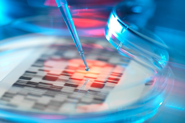 Presence of Genetic Variants Not Always Predictive of Cancer Risk