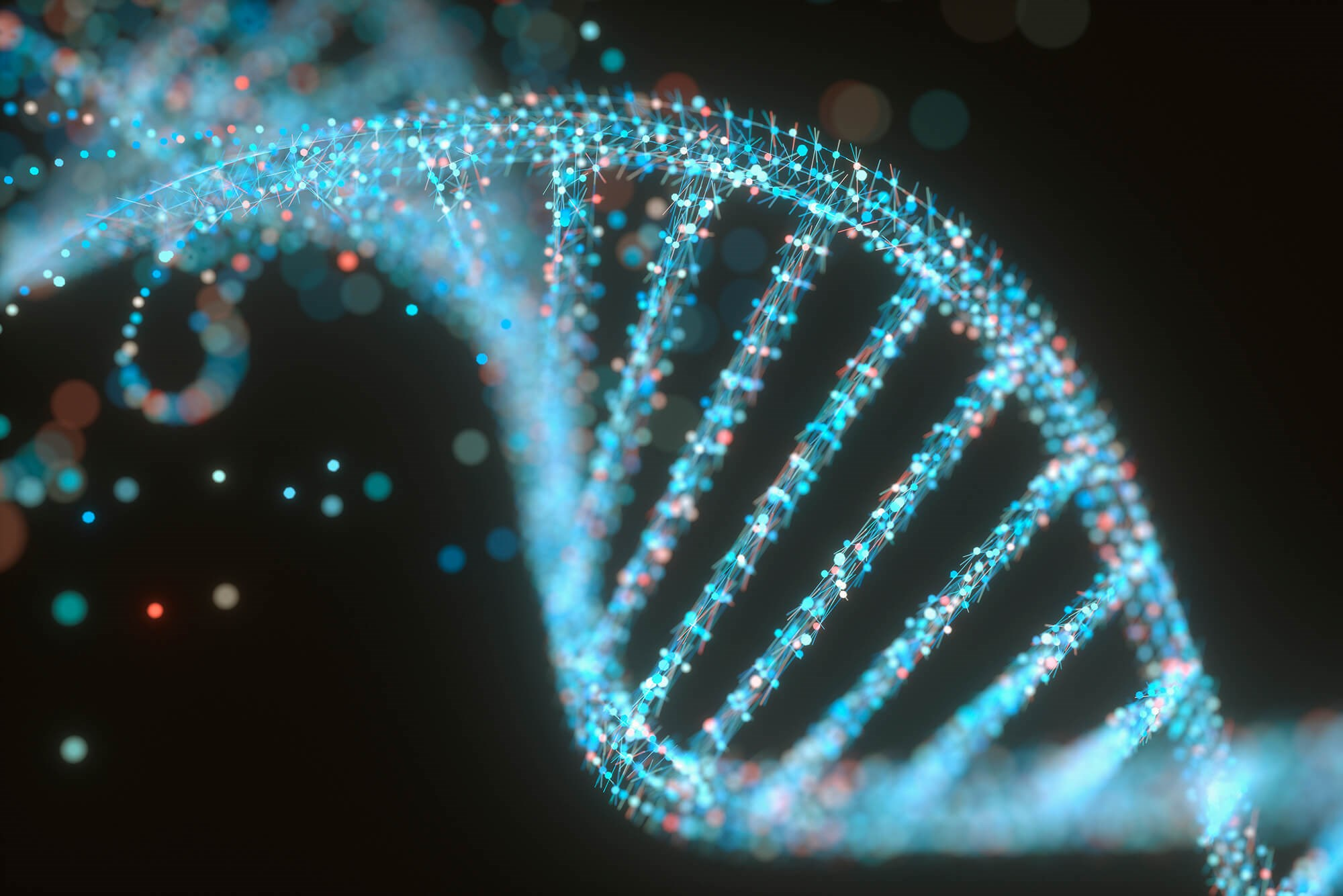 A data analysis revealed a genetic predictor of relapse for pediatric patients with ALL.